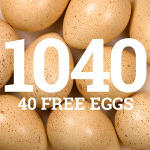 1040 Chukar Eggs